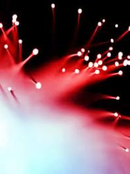 article photo